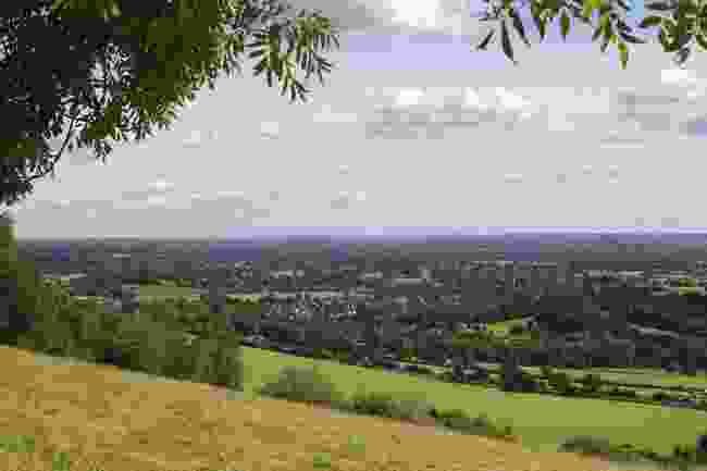 Box Hill views (Shutterstock)