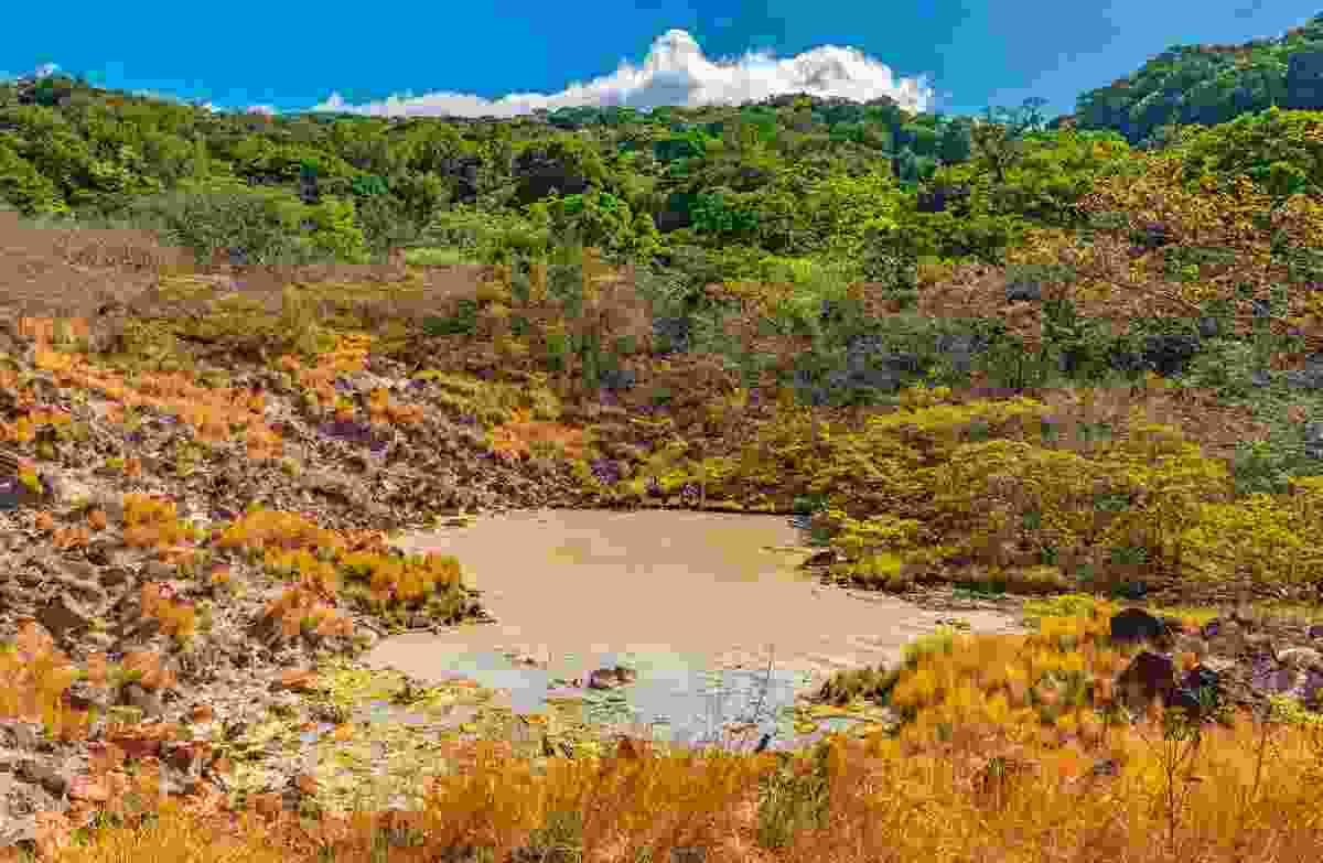 Sulphur lagoon in Rincon de la Vieja National Park, Costa Rica (Shutterstock)