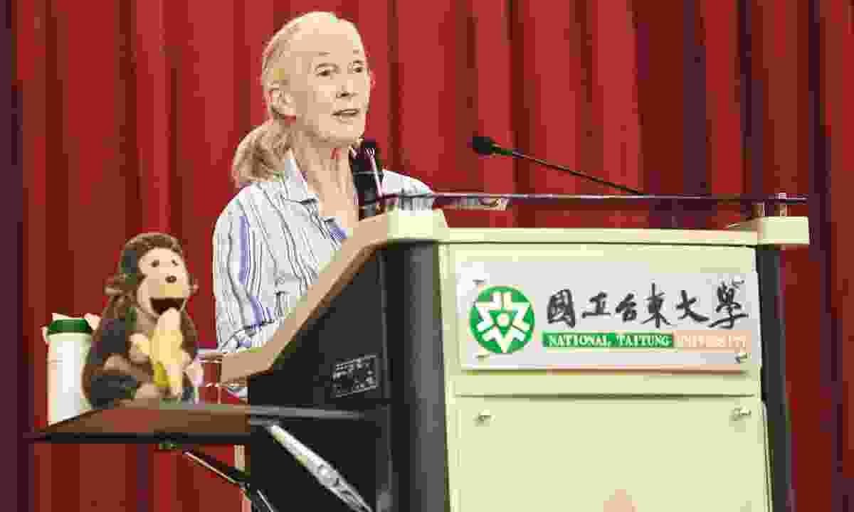 Jane Goodall gives a presentation at Taitung University (Dreamstime)