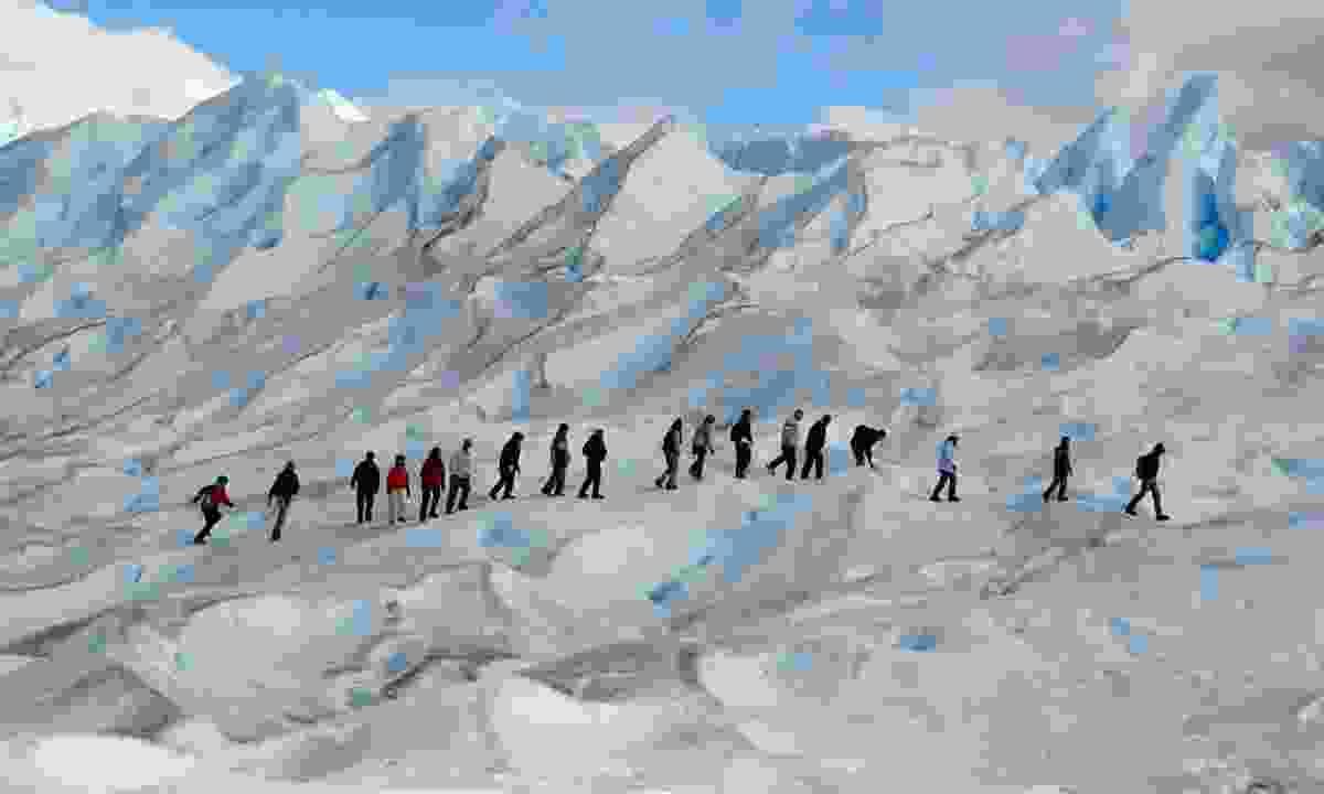 Trekking on a glacier, Perito Moreno, Argentina (Dreamstime)