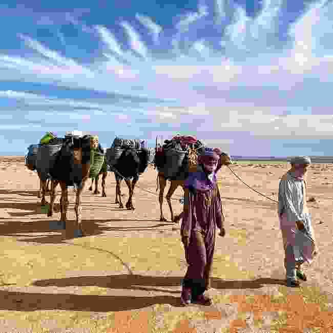 Alice wishes she was in the Sahara (Alice Morisson)