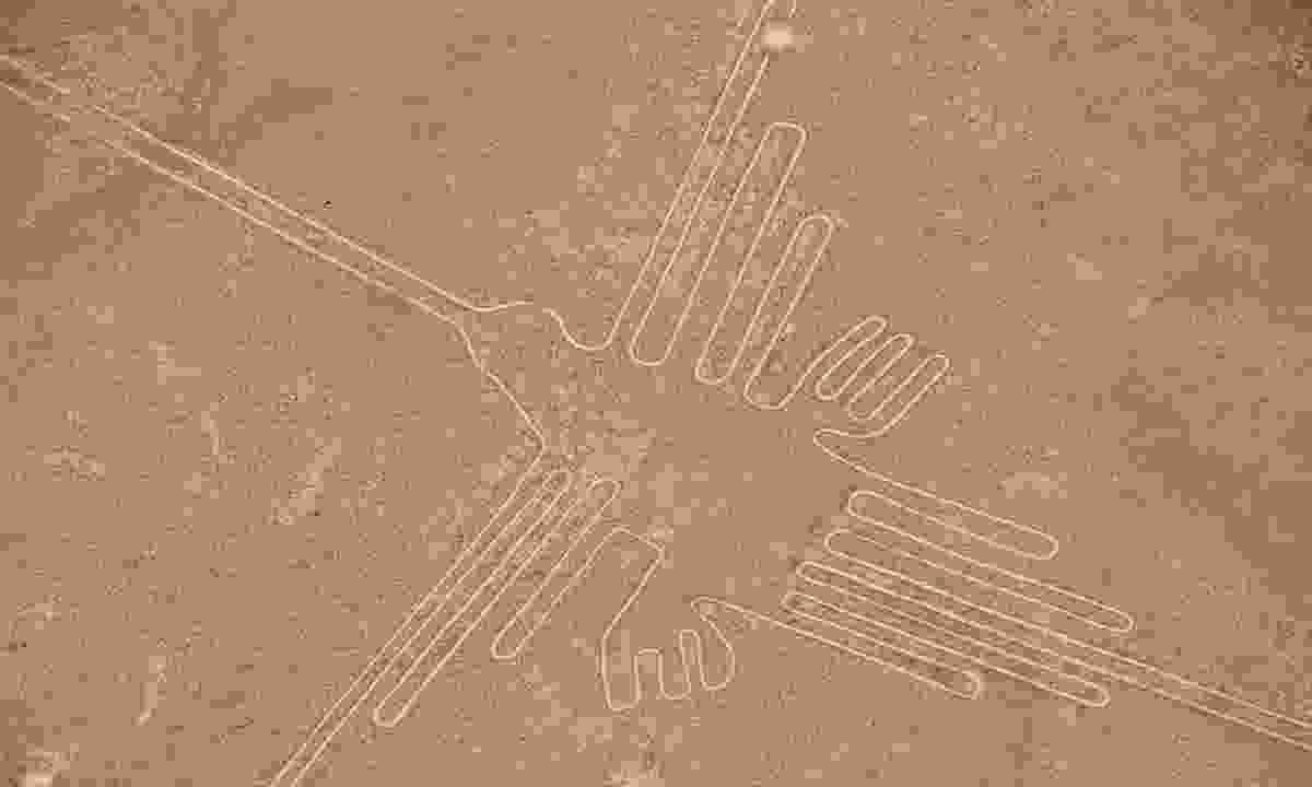 Aerial view of the Hummingbird Geoglyph (Shutterstock)