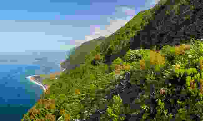 See epic coastal views in the Azores (Visitazores)