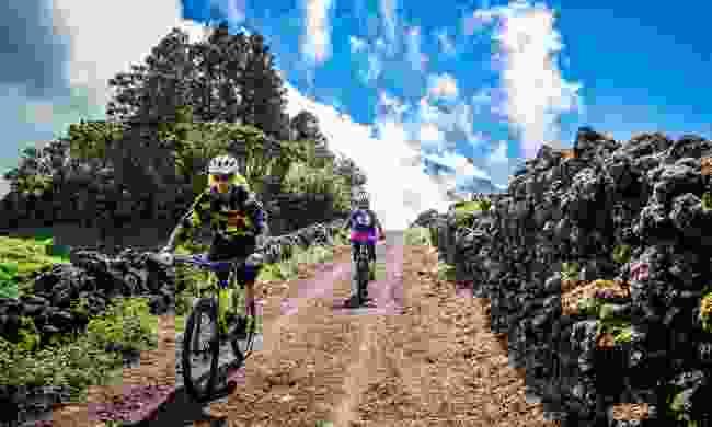 Take advantage of the bike trails (Visitazores)