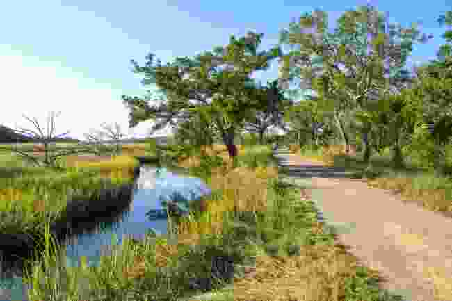 Jekyll Island Bike Trail, Georgia (Shutterstock)