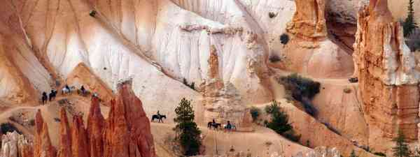Horseriding in Bryce Canyon National Park is one of the best adventures to be had here