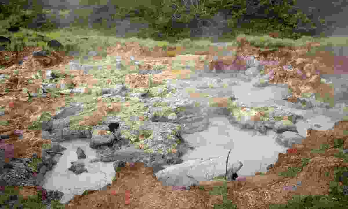 Boiling mud in Rincon de la Vieja National Park (Dreamstime)