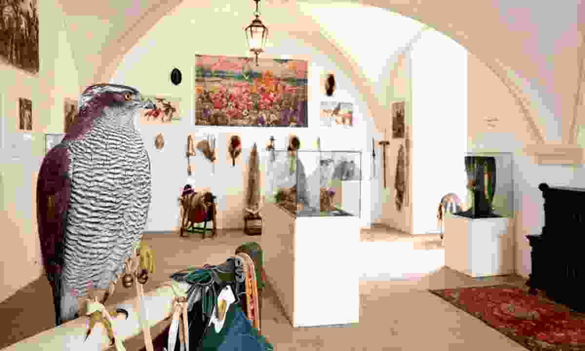 Falconry Museum at Castle Rosenburg (Castle Rosenburg)