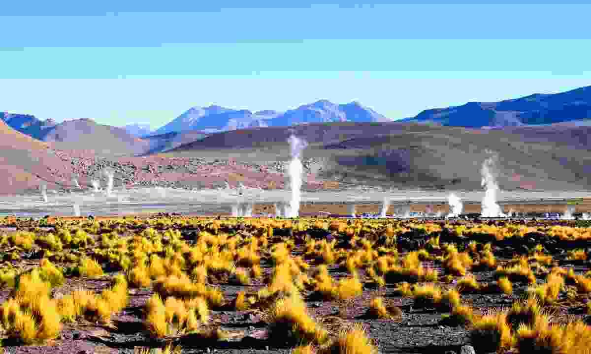 Geysers of the Atacama (Shutterstock)