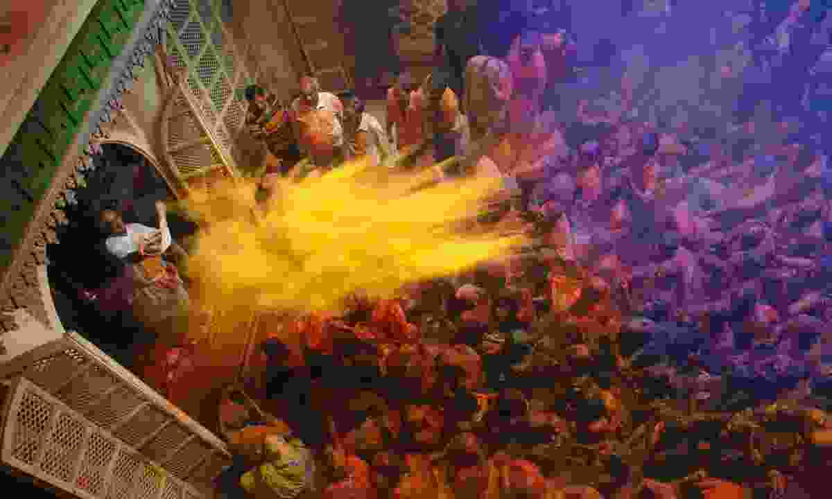 Colours of Holi festival (Dreamstime)