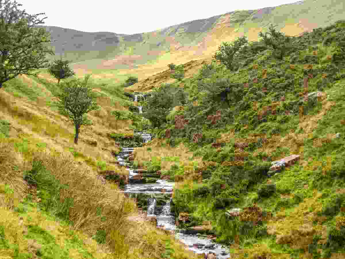 Nant Sere Waterfalls and Woods (Daniel Start)