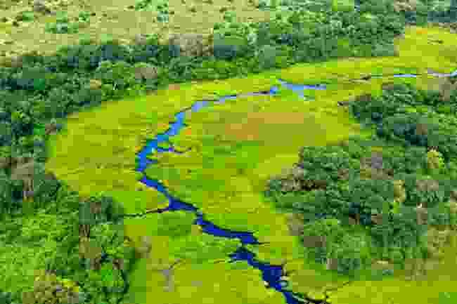 An aerial view of the green Okavango Delta (Shutterstock)