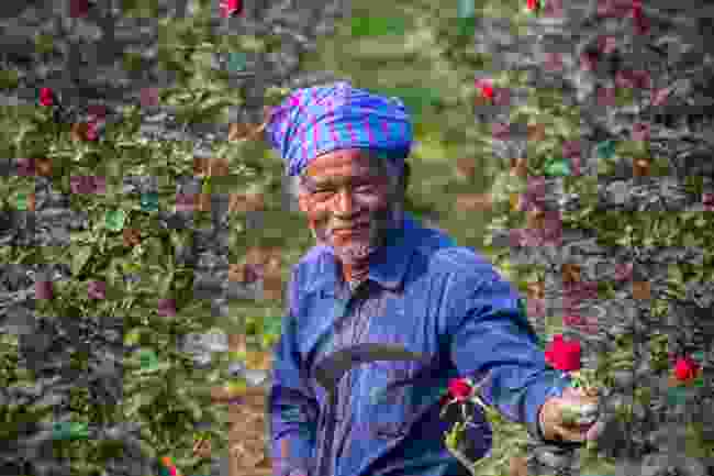 A farmer in Bangladesh (Shutterstock)