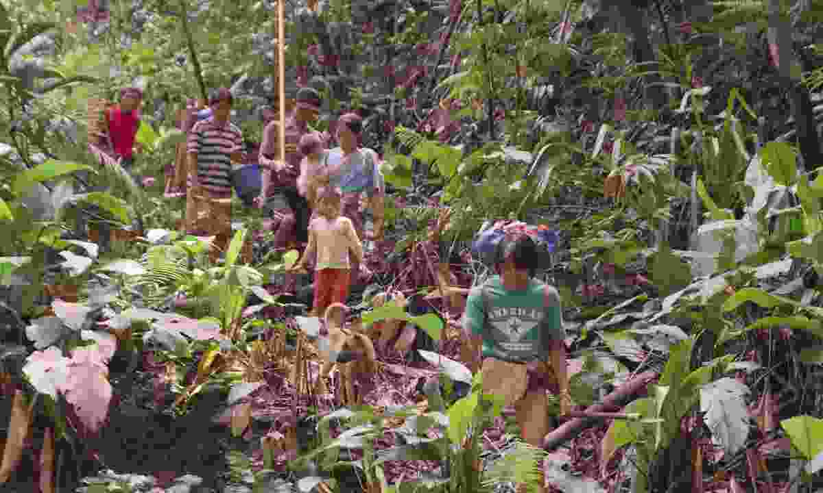 Walking through the jungle in Borneo (Munro Films)