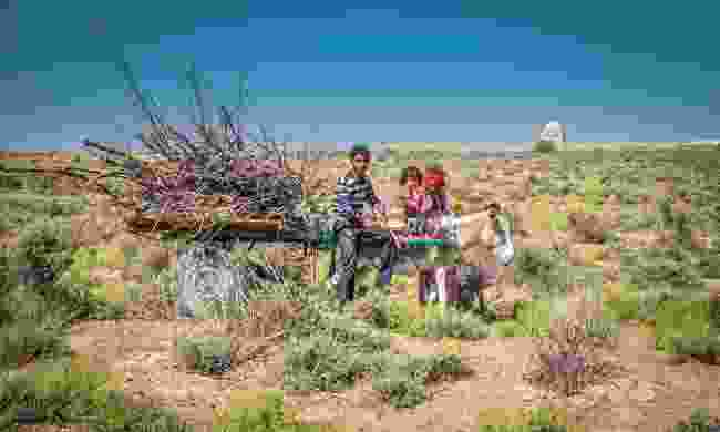 Local family collecting wood in Merv, Turkmenistan (Dreamstime)