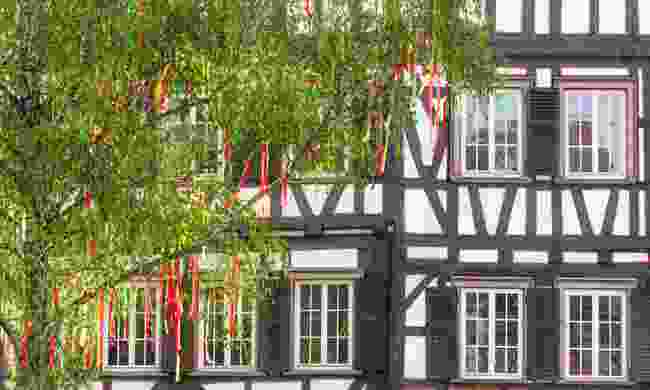 Decorated birch tree in Germany on May Day (Shutterstock)