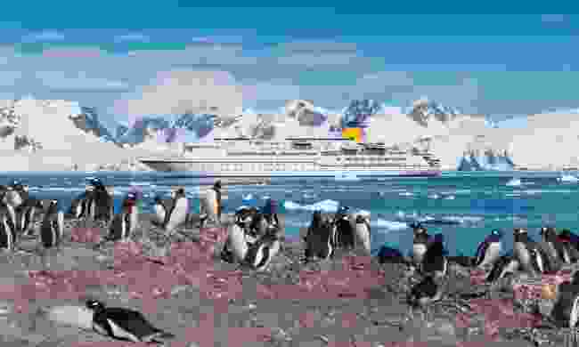 Explore Antarctica by cruise ship (Dreamstime)