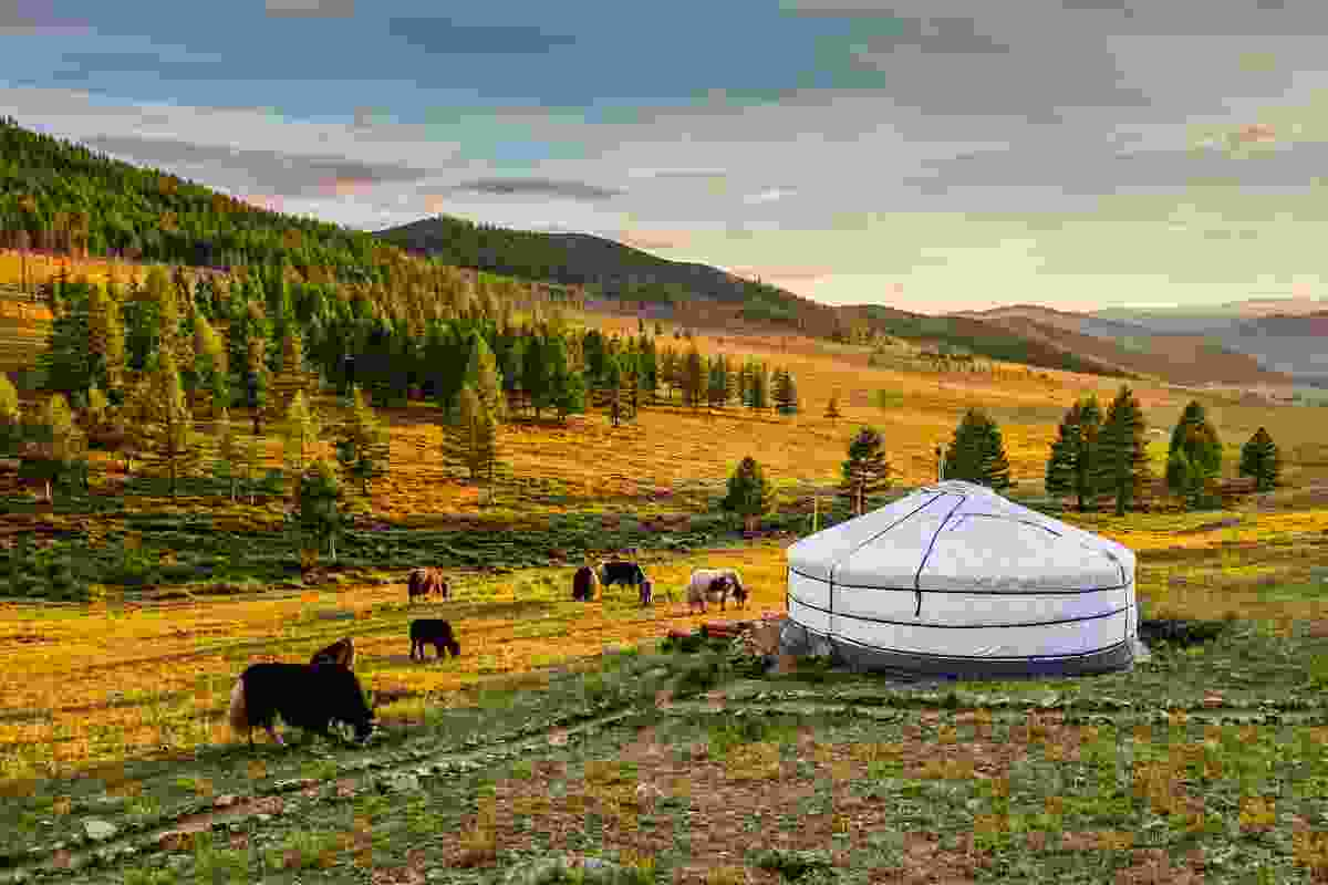 Mongolia (Shutterstock)