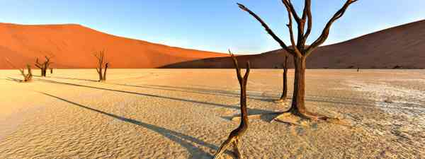 Can you name this desert (Shutterstock)