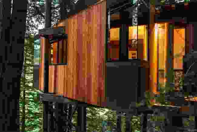 Treehouse nestled amongst the mighty redwoods (Post Ranch Inn)