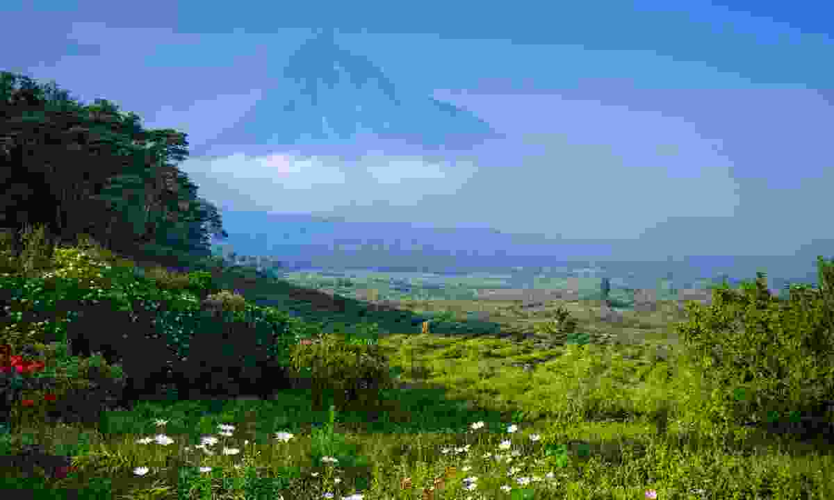 View of a volcano in the Virunga National Park in the Democratic Republic of Congo (Shutterstock)