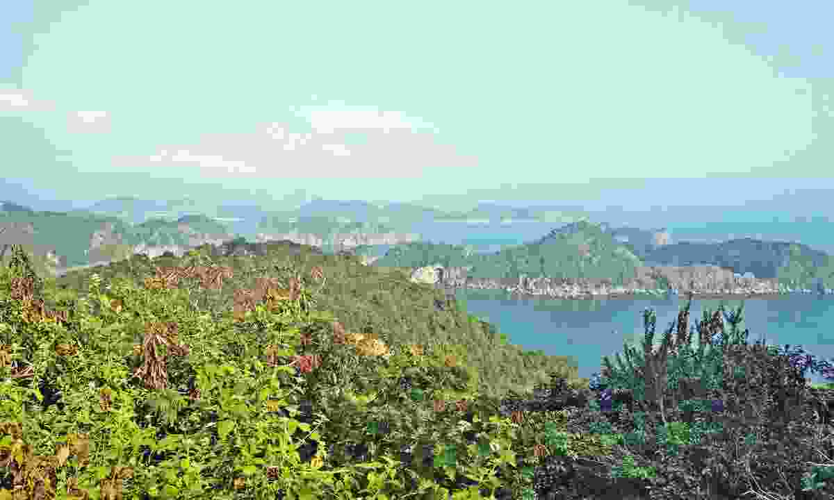 Enjoy the view of Lang Ha Bay and Halong Bay from the top of Cat Ba's Cannon Fort (Shutterstock)