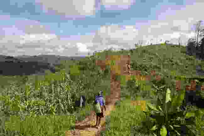 Embark on a guided trek through Batang Ai National Park (Shutterstock)