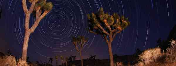 Stargazing in the Mojave Desert (Dreamstime)