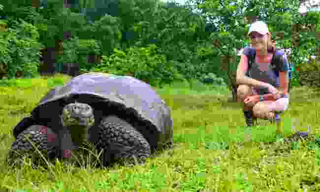 Meeting a giant tortoise in the Galapágos (Dreamstime)
