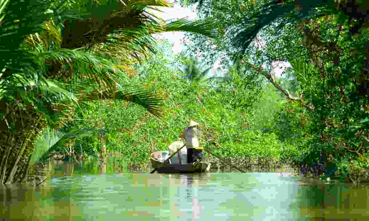 Traditional boat near Can Tho in the Mekong Delta (Dreamstime)