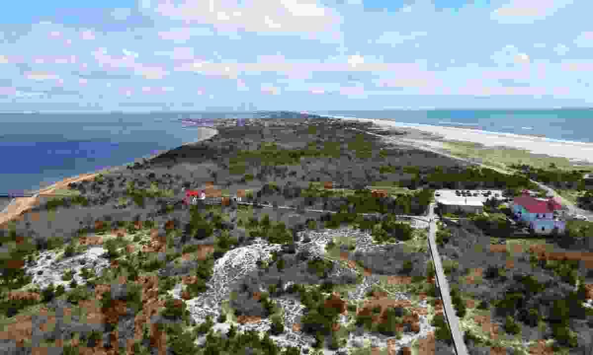 The Long Island coast (Helen Moat)