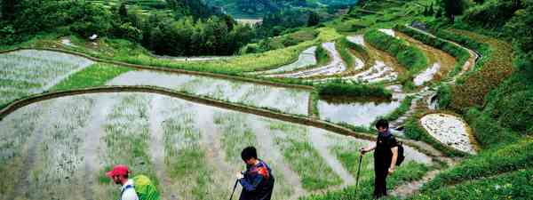 Hiking in the rice fields of Xuefeng (Leon McCarron)