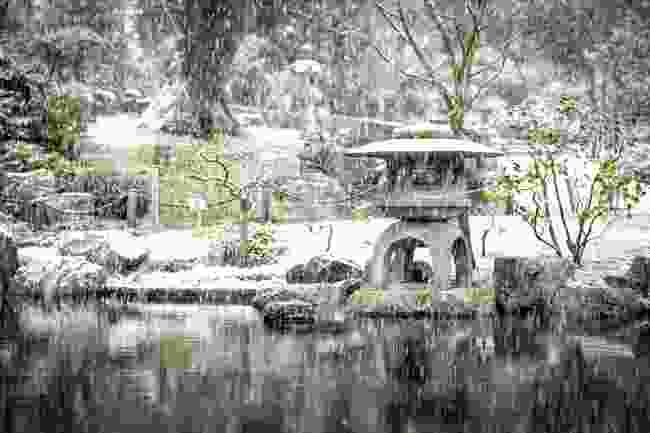 Holland Park (Shutterstock)