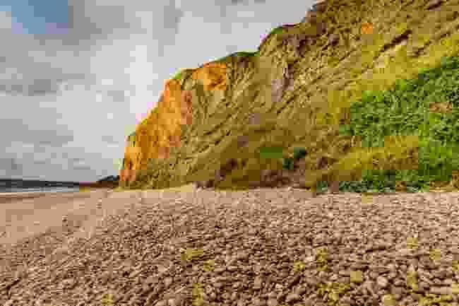 The cliffs at Sandown, Isle of Wight (Shutterstock)