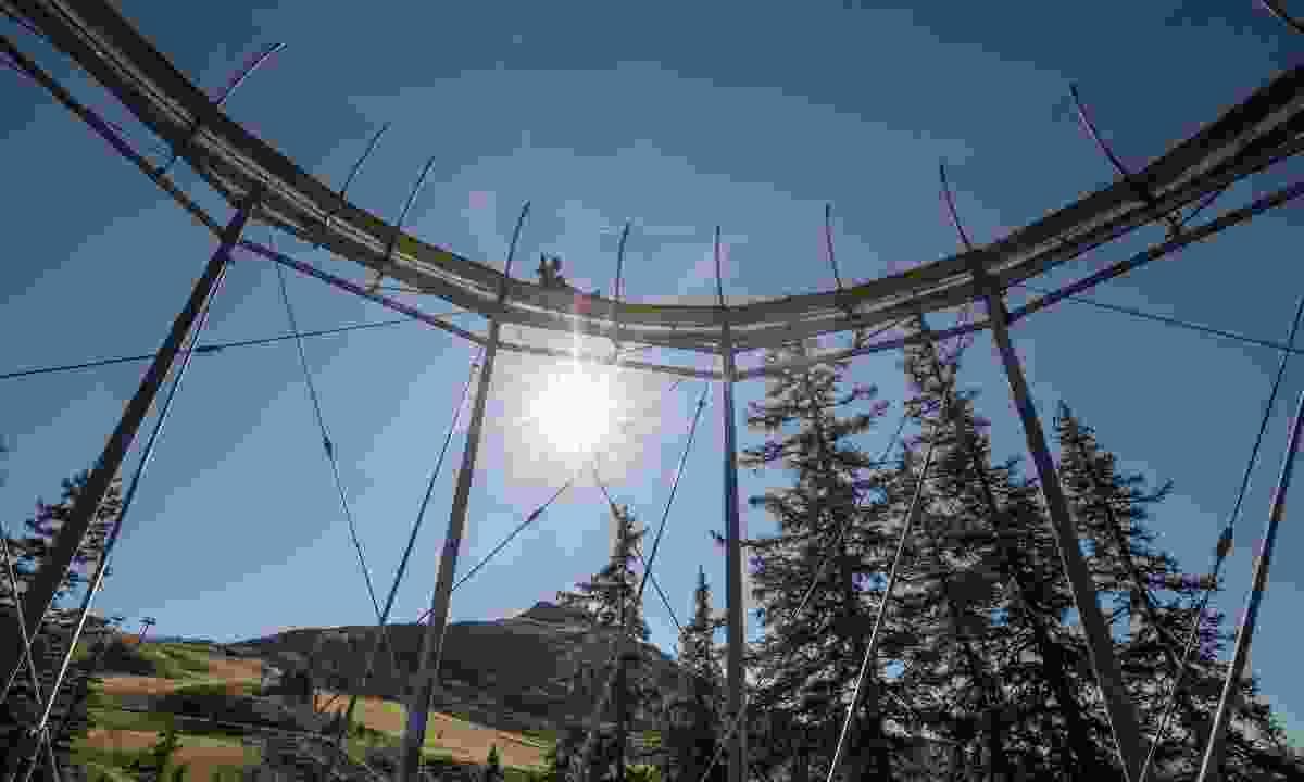 The Lauser Sauser coaster (Alpbachtal Seenland Tourism)