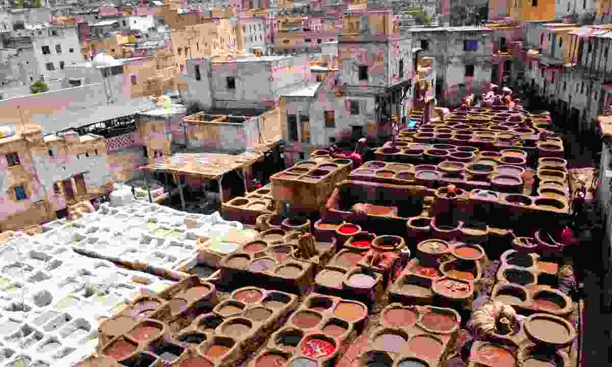 Leather tanning, Fez (Dreamstime)
