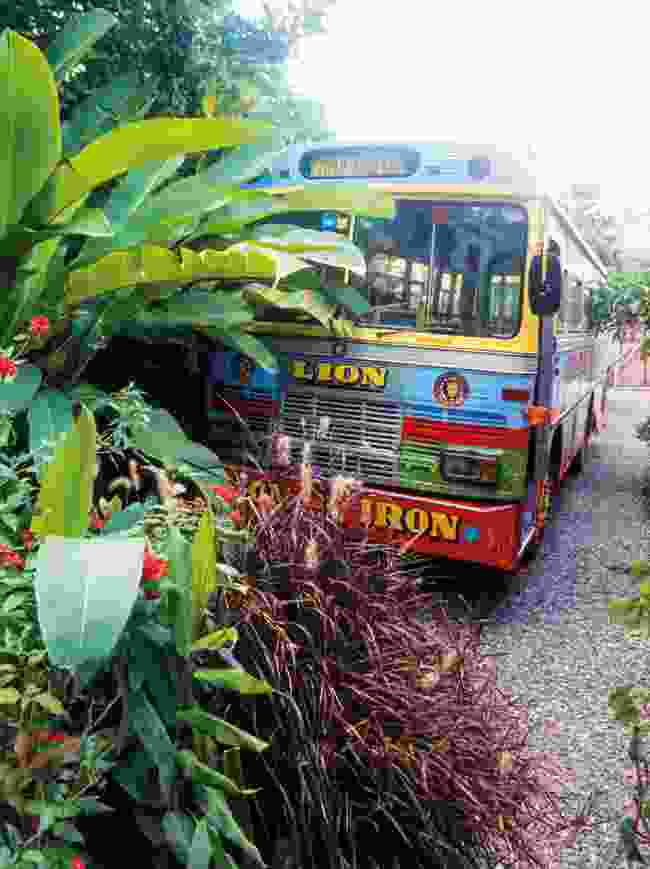 The Reggae Bus: A lot to handle (Paul Clammer)