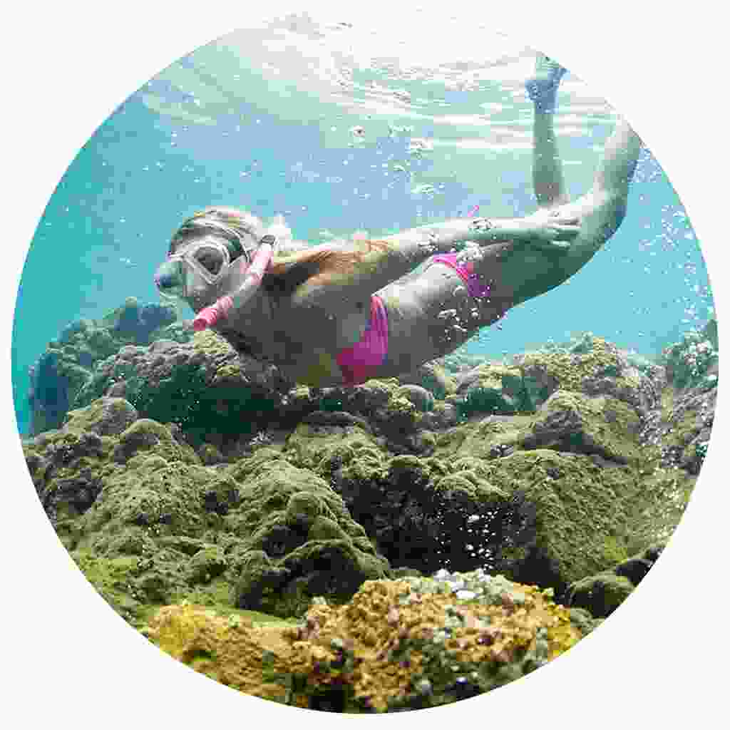 Snorkelling in Dominica's clear waters