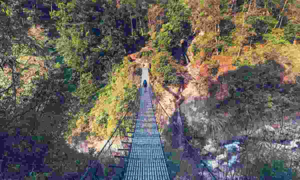 Trekking into the lush greens of the Kangchenjunga (Shutterstock)