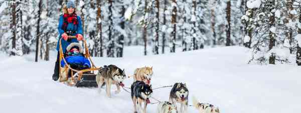 Readers' tips: Travelling in Lapland