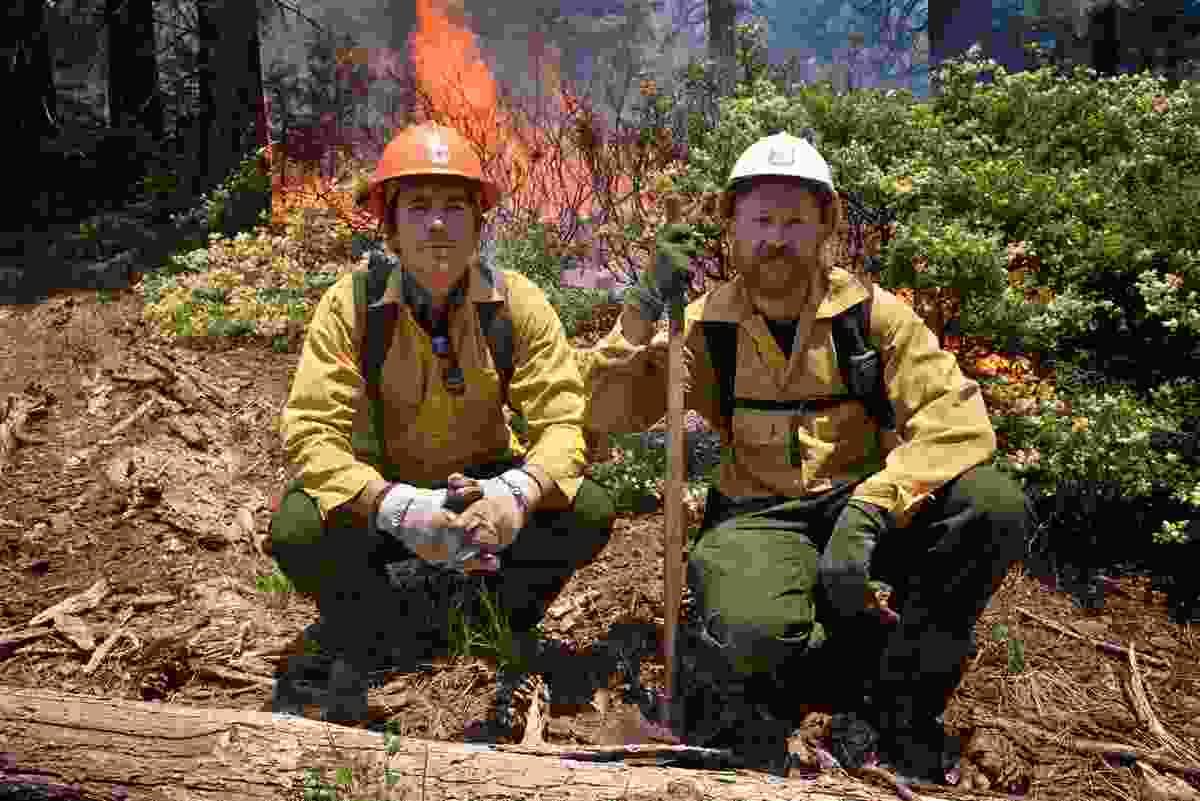 With forest firefighter Travis Thane, El Dorado National Park, California (BBC/Ruairi Dunne)