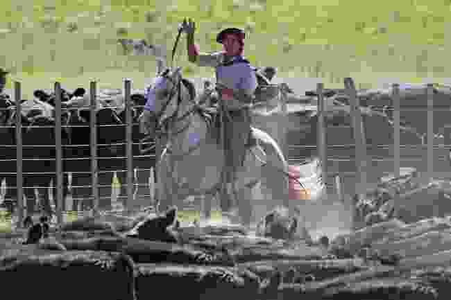 Cowboys on horseback (LMB)