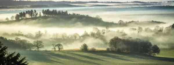 Leith Hill (Shutterstock)