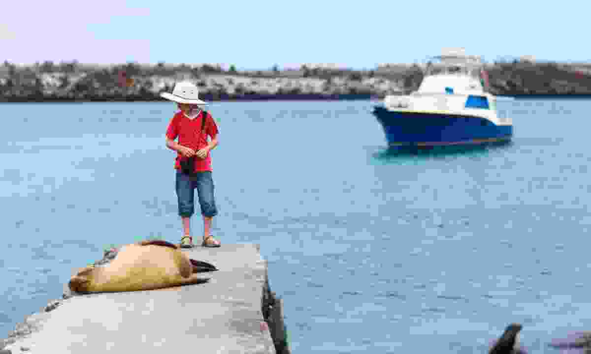 Boy with a sea lion in the Galapagos (Dreamstime)