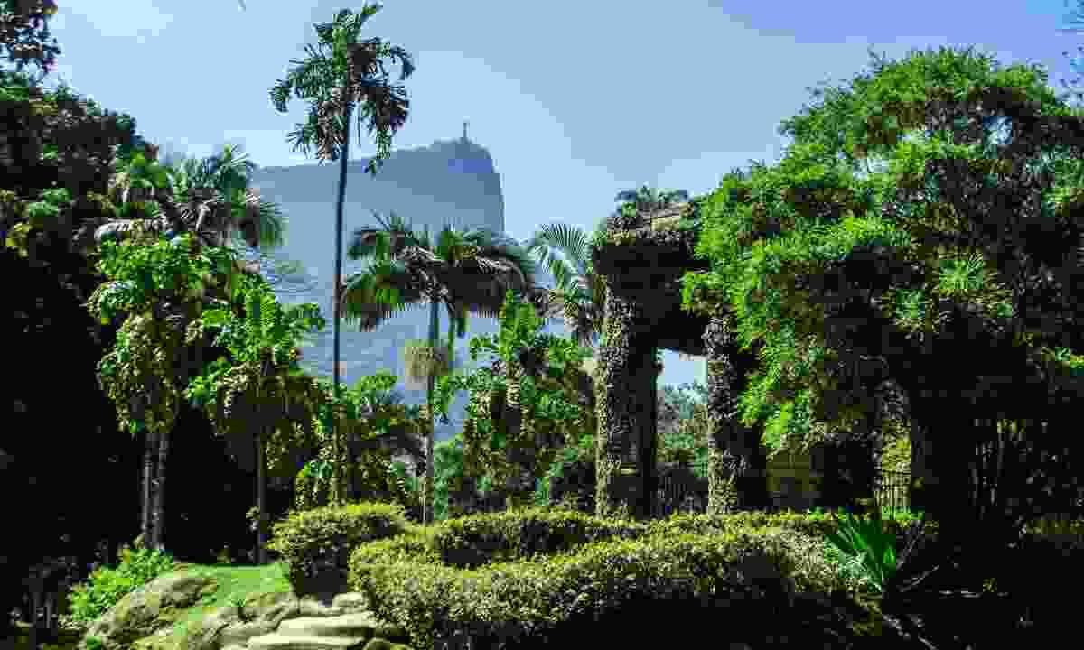 Jardim Botânico. Under the watchful eye of Christ The Redeemer (Dreamstime)