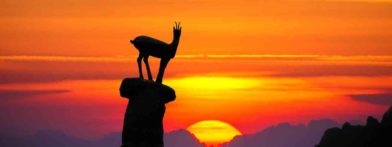 Mountain goat silhouetted in Pico De Europa (Shutterstock)