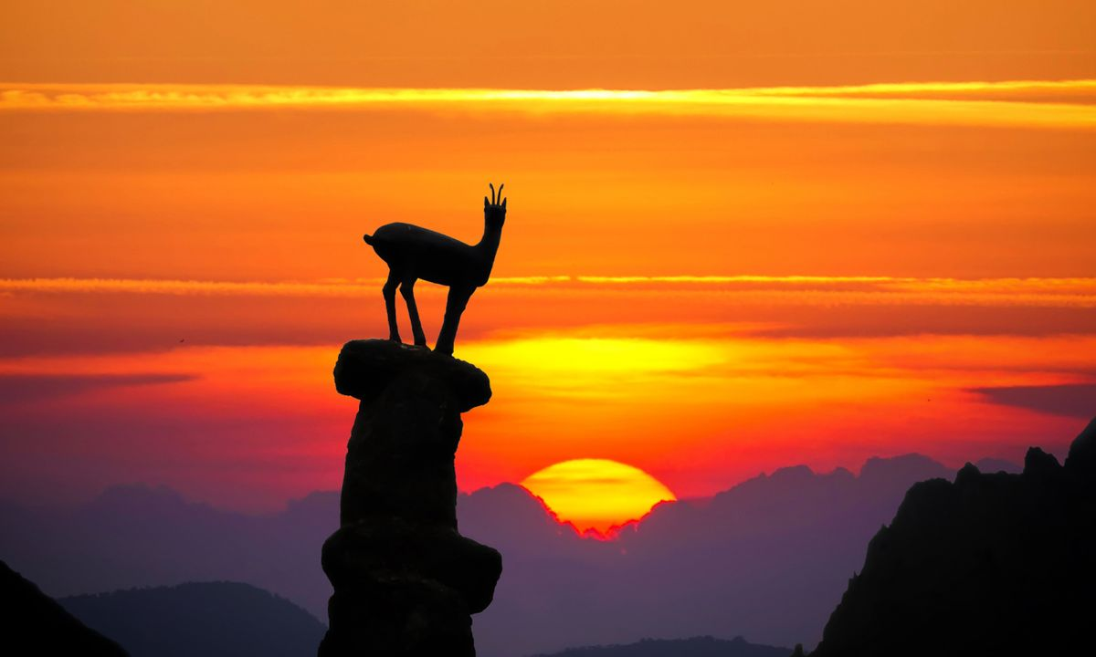 7 super active and wildlife adventures in Spain