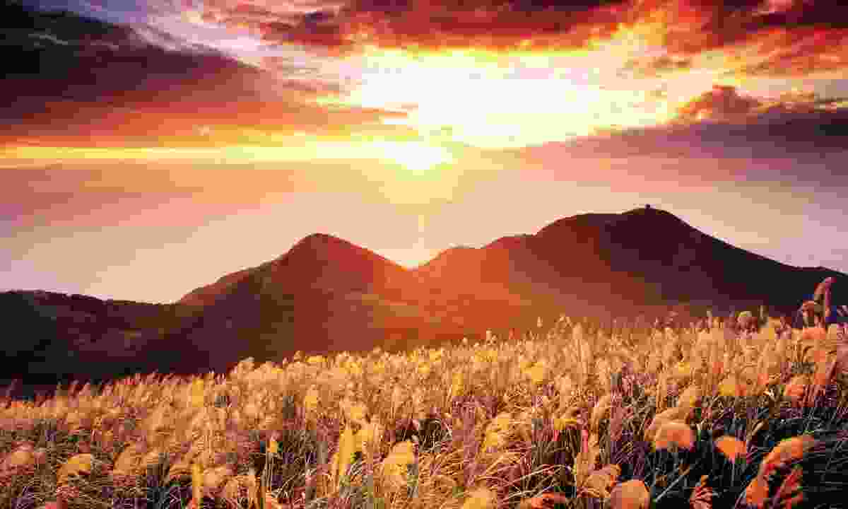 Yangmingshan National Park sunset (Dreamstime)