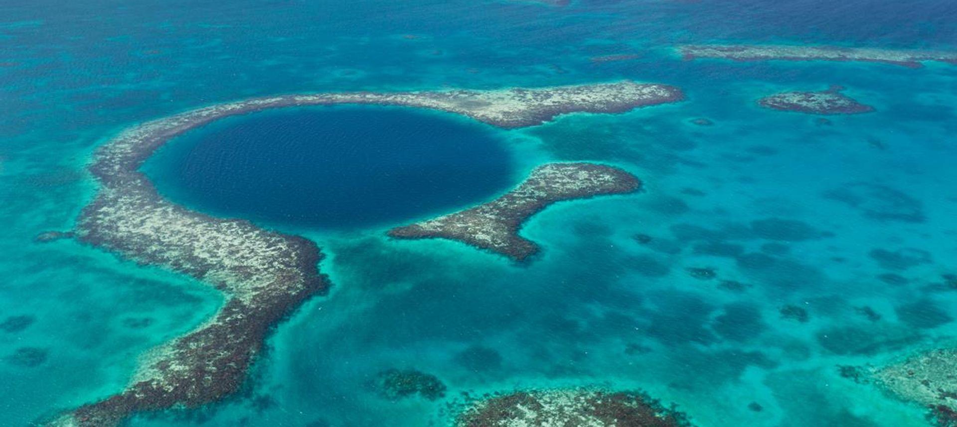 Jaguar in Belize (Demian Solano Photography)