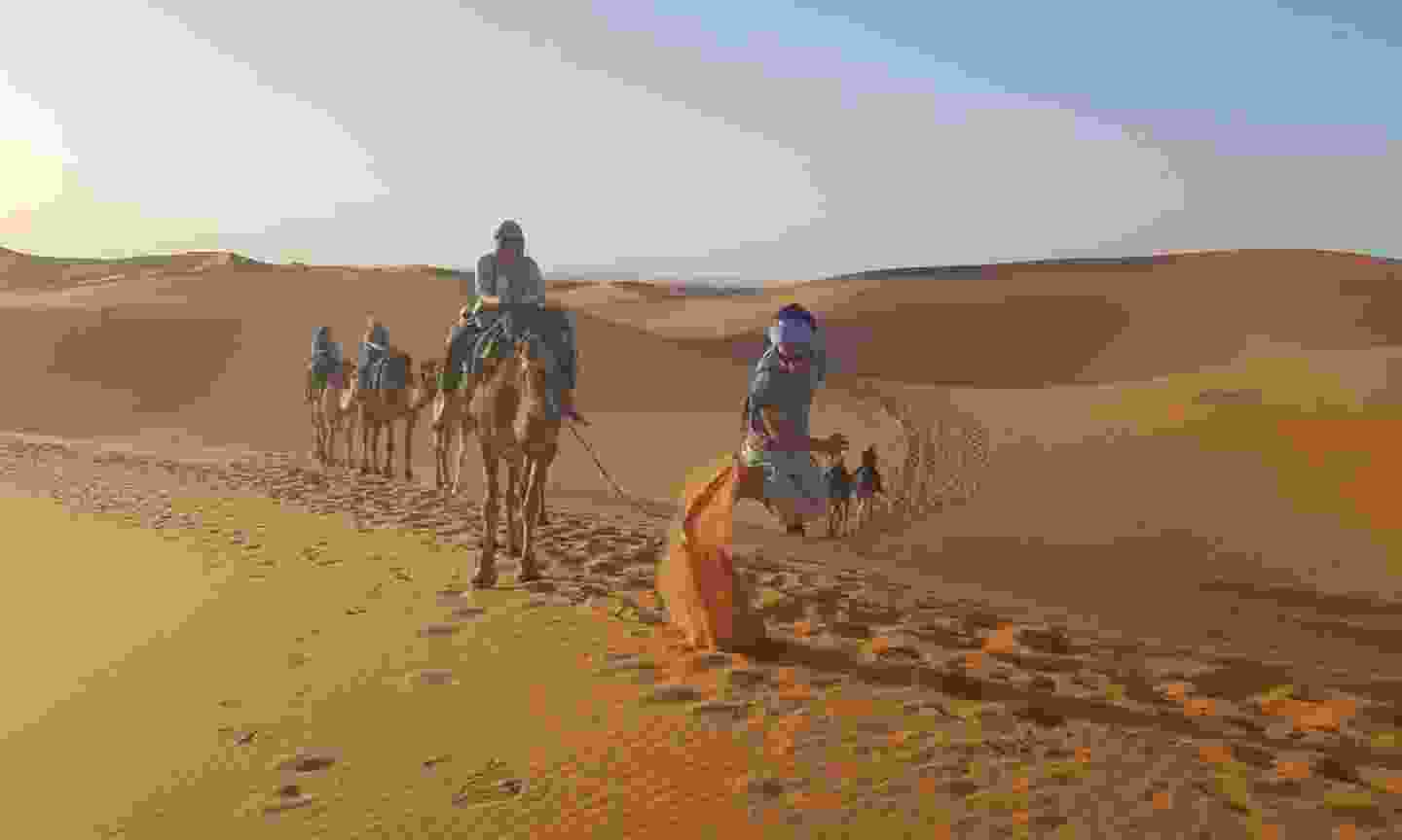 Camel riding in the Sahara Desert with Khalid (Intrepid Travel)
